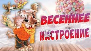 Прикольное видео поздравление с 8 Марта. Поздравление мультфильм для девочек с днем 8 марта