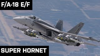 Arma F/A-18 Super Hornet Version 5.0 Overview