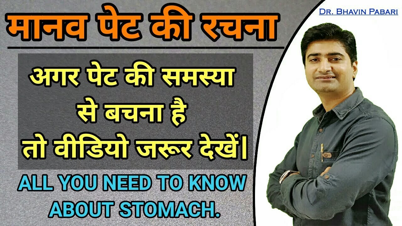 Stomach Anatomy Physiology Function Of Stomach Gastric Juice