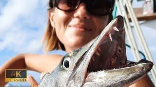 105 Рыбалка на Карибах Поймали дайверов LIZARDFISH и съели их и много кого ещё Barracuda 4K