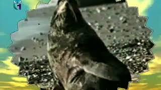 Экология – наука, которая изучает законы природы (фильм - лекция)