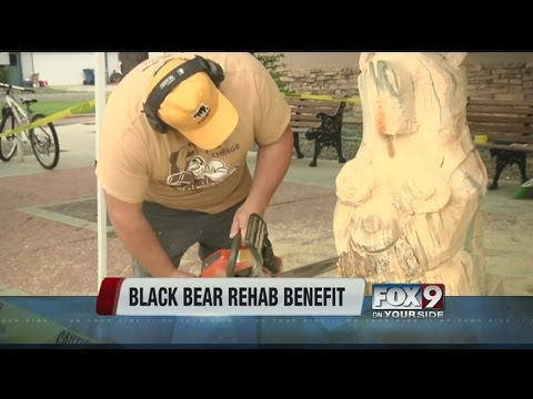 Black bear carving goes to benefit rehab