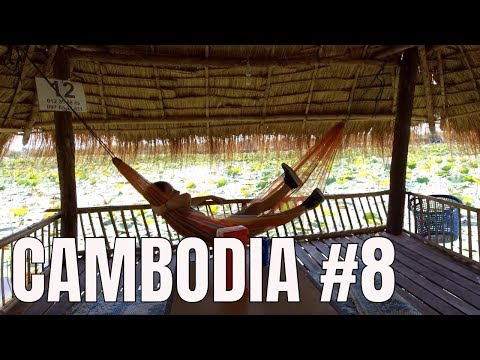 Holiday in Cambodia ❤  Local Farms 🌿Lotus Fields  2018