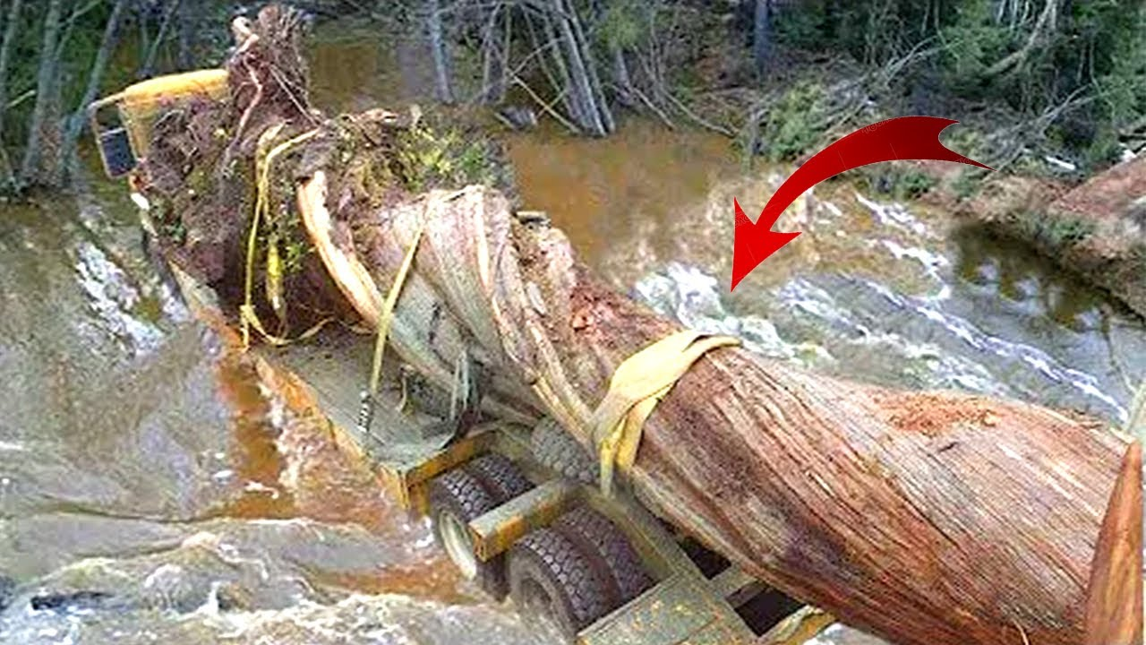 Crazy Dangerous Truck Driving Skills! Truck Crossing River & Extreme Muddy Road