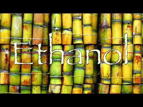 Brazilian News Segment: Ethanol in Brazil