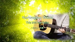 THE BEATLES : Norwegian Wood (This bird has flown) 【ノルウェーの森】 - instrumental cover