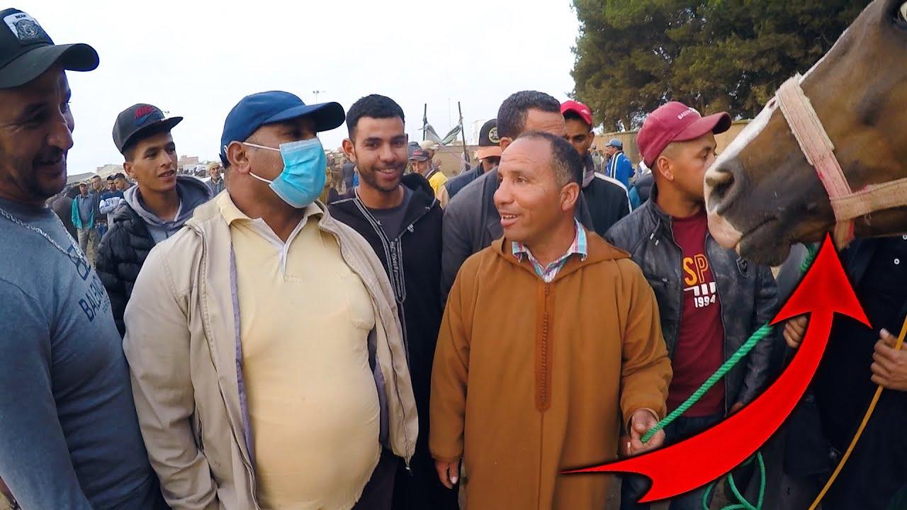 حميد طيكطوك هو سبع 🦁 د سوق الخميسات اليوم عندو فحال ربح فحال لخطية بارك على لبوطونة الحمرة. الجزء 1