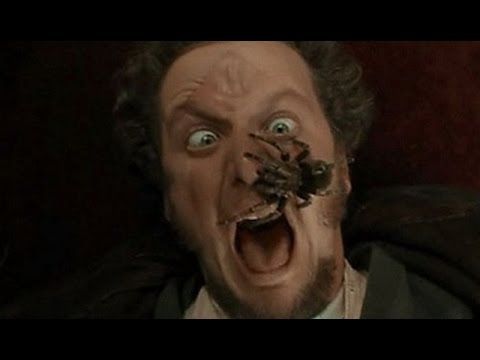 Home Alone's Daniel Stern Reunited With TARANTULA  What's Trending Now