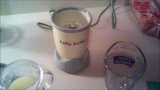 Baby Bullet Blender - Pureed Apple