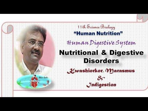 Download HUMAN NUTRITION (Part-1)