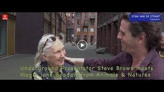Underground Presentator Steve Brown meets Magic Jane Goodall from the Animals & Nature