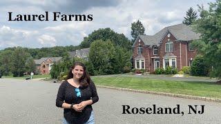 R&D Presents Laurel Farms