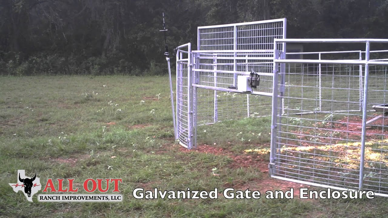 Hog Trap With Rigid Panels Video Youtube