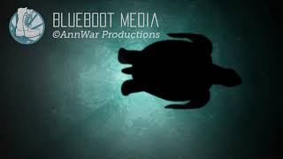 Film Title Production Animation Using Maya, Adobe Animate, After Effects, Audition, and more.