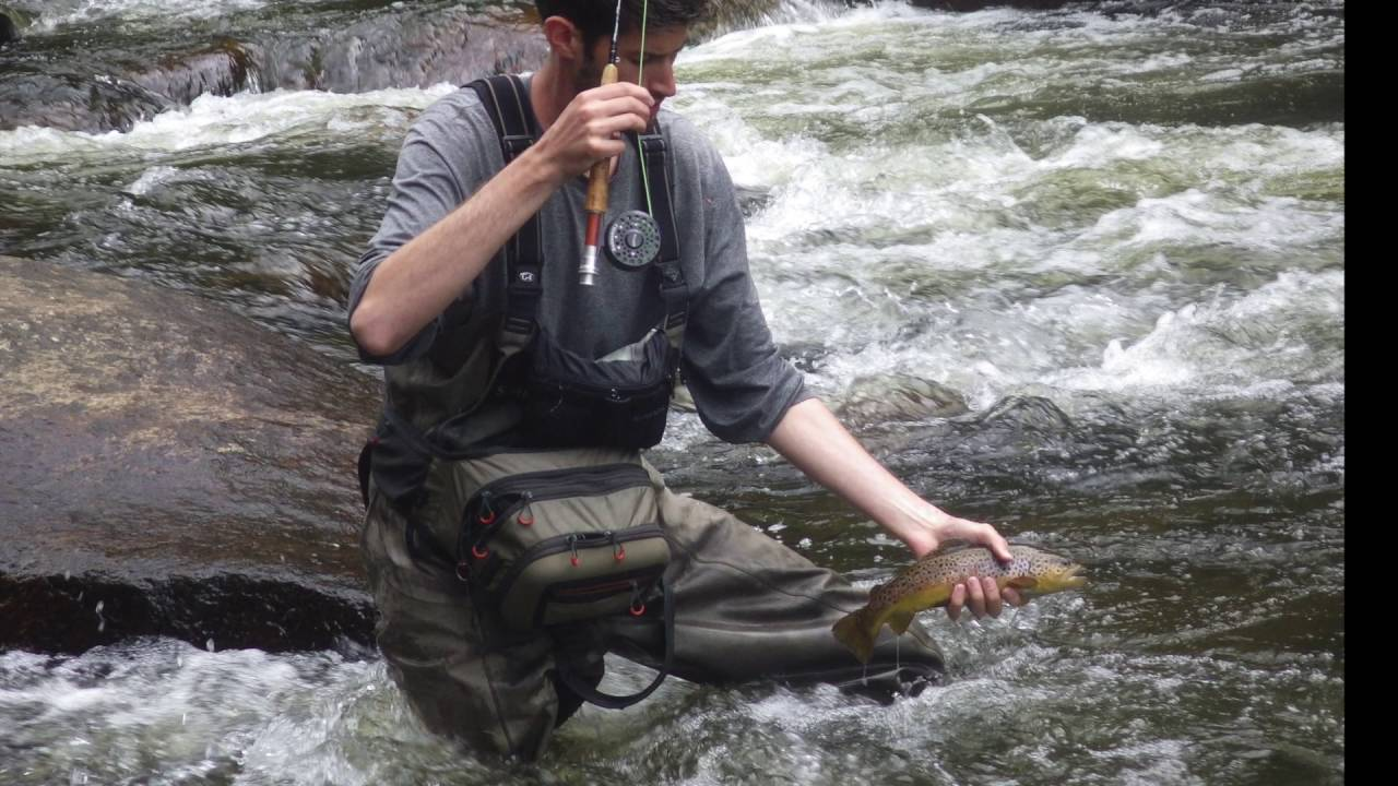 West branch of the ausable river brown trout fishing youtube for Ausable river fishing report