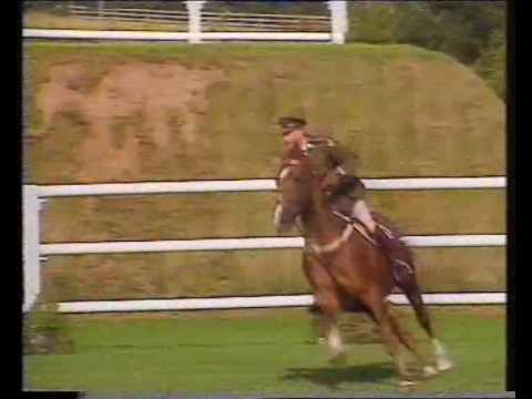 Capt. John Ledingham (IRL) & Kilbaha (ISH) - 1994 Hickstead Derby 1st Rnd clear