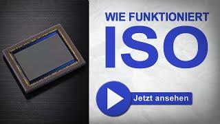 Was ist ISO? Warum rauscht ein Foto? - Fotografieren Lernen