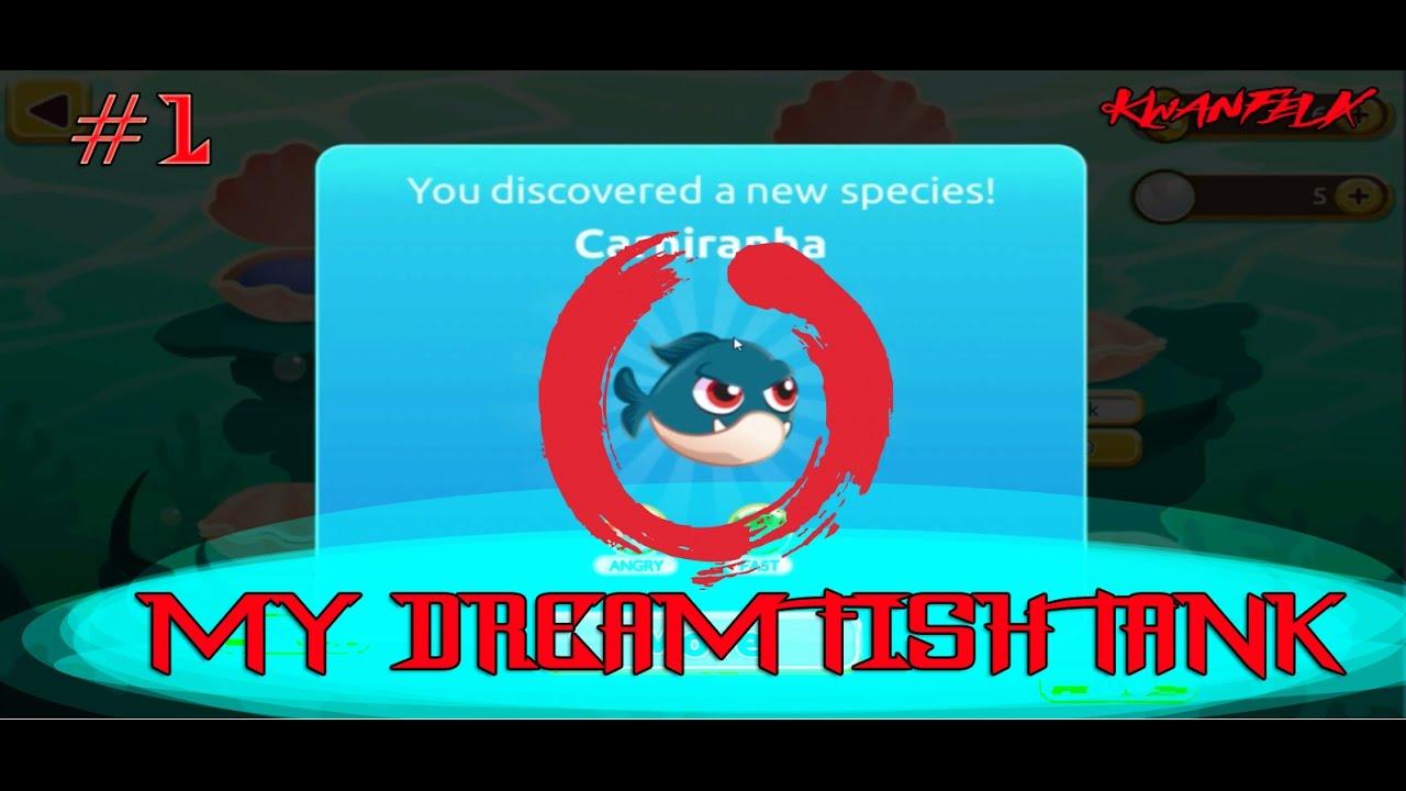 Fish tank kings a snorkelers dream -  1 My Dream Fish Tank Tutorial Gameplay