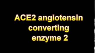 what is the definition of ACE2 angiotensin converting enzyme 2 (Medical Dictionary Online)