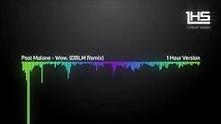 Post Malone - Wow. (DBLM Remix) | [1 Hour Version]