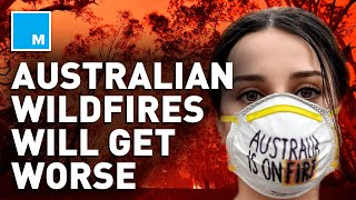 Why Australia's Wildfires Will Get WORSE | Mashable Explains