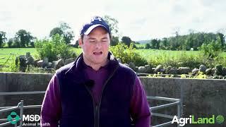 Paul Molihan discusses vaccination on his farm