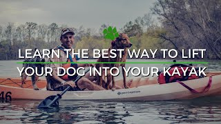 Happy Tails Tours - How To Get Your Dog Into your Kayak or SUP from the Water Long