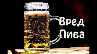 Калорийность пива на 100 грамм, Балтика, Клинское. Таблица.