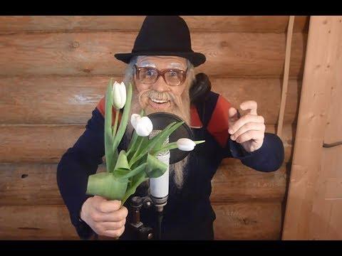 Поздравление с 8 марта Дед Архимед - Видео с YouTube на компьютер, мобильный, android, ios