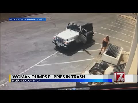 image for WATCH: Woman Caught on Video Dumping Puppies in Trash