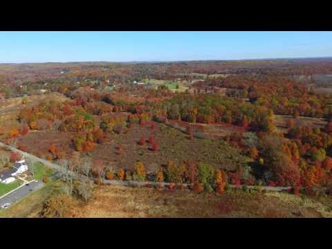 Overhead view of the fall foliage in North New Jersey