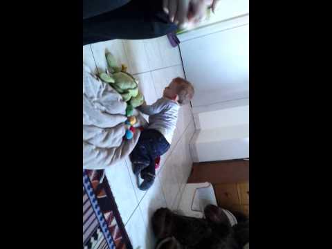 video - 2011-11-27-14-13-14.mp4
