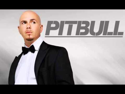 pitbull mix 1234