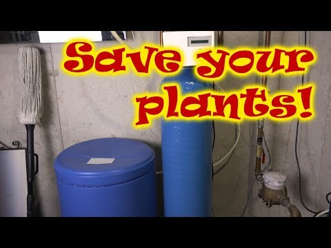 My Water Softener Will Kill My Plants!