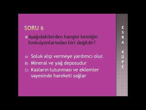 AUZEF ANATOMİ ÇÖZÜMLÜ TEST #EĞİTİM