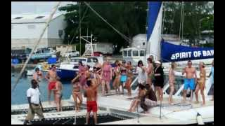 Tiami Catamaran Video: Swimming with Turtles & Party Cruising