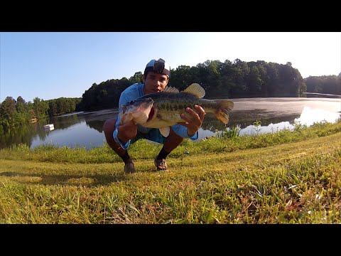 Great Day Bass Fishing In Georgia!!!