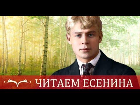 Изображение предпросмотра прочтения – ЕлизаветаТищенко читает произведение «Листья падают, листья падают...» С.А.Есенина