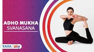 Tata Sky Fitness | #MasterYogaIn21Days - Day 8 - Adho mukha svanasana with Bhakti Raval