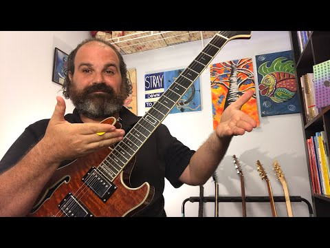 Phred Instruments: Ernesto VH Gen 2 Live Review and Q/A