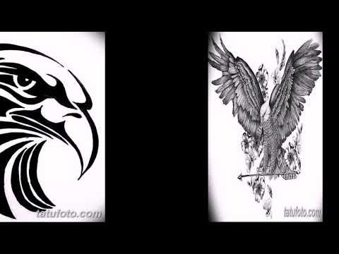 Эскизы тату орёл - коллекция рисунков для татуировки с орлом