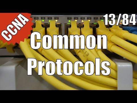CCNA/CCENT 200-120: Common Protocols 13/84 Free Video Training Course