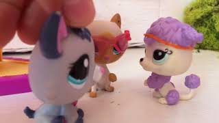 LPS: M&M ep.2 New Findings