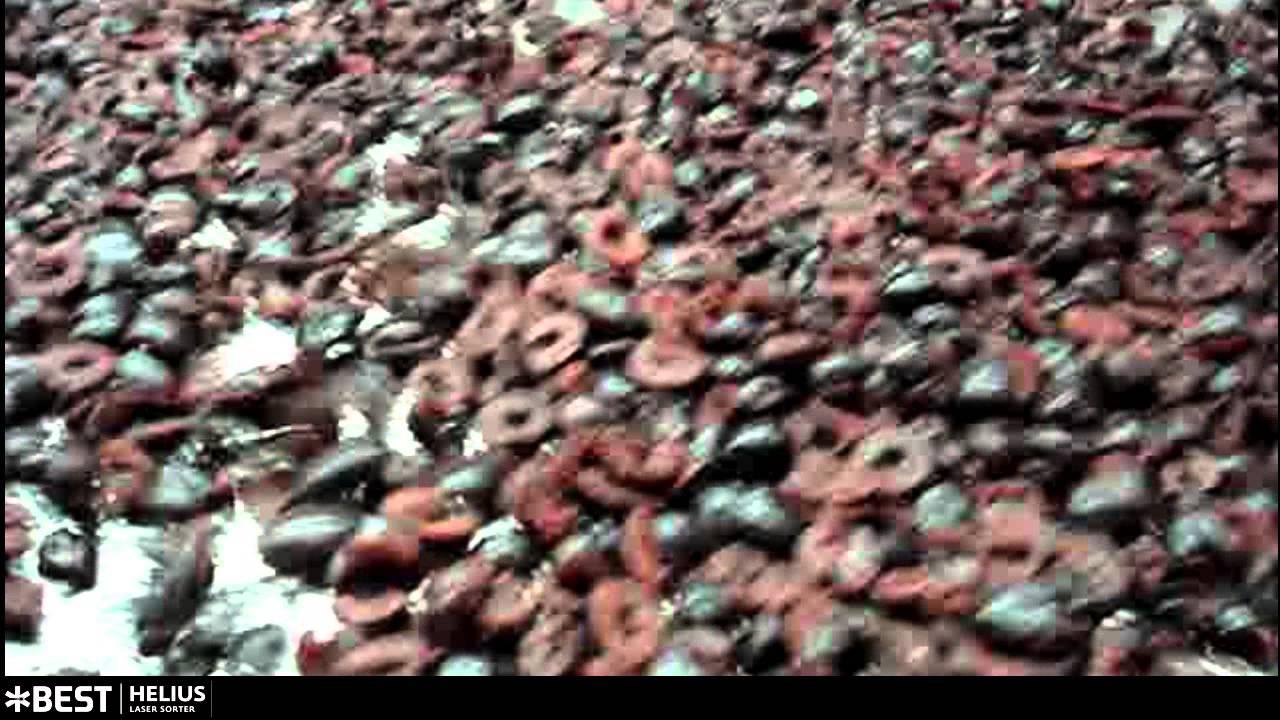 Cherry halves sorter Helius - TOMRA Sorting