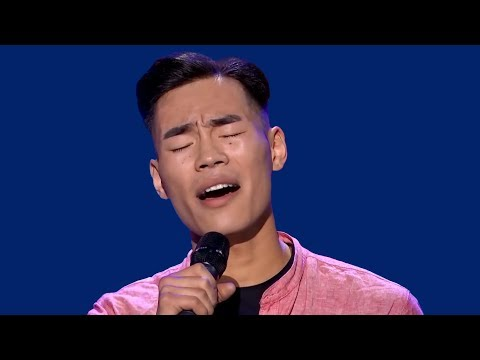The Voice - Best Blind Auditions Worldwide (№6)