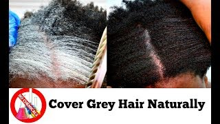 How To Turn White Or Grey Hair Into Black Naturally With No Chemicals Natural Hair Dye Step By Step