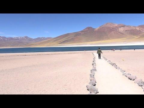 lagunas Miscanti y Miniques at Atacama in Chile