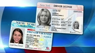 New York licenses to get new look
