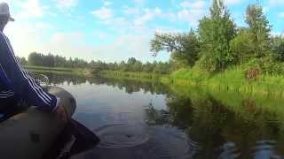 видео о рыбалке на кружки
