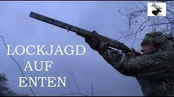 Lockjagd auf Enten ( German Waterfowl Hunting )